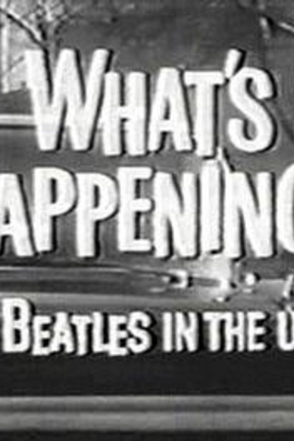 What's Happening! The Beatles in the U.S.A.(  )