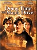 完美家庭/Doing Time on Maple Drive(1992)