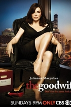 傲骨贤妻/The Good Wife (2009)