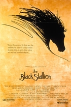 黑神驹/The Black Stallion(1979)