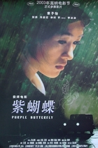 紫蝴蝶/Purple Butterfly(2003)