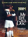 狗脸的岁月/My Life as a Dog(1985)