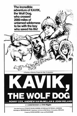 The Courage of Kavik, the Wolf Dog( 1980 )