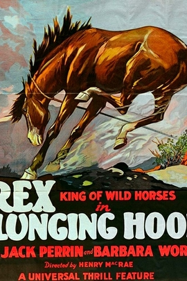 Plunging Hoofs( 1929 )