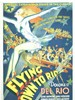 飞往里约/Flying Down to Rio(1933)
