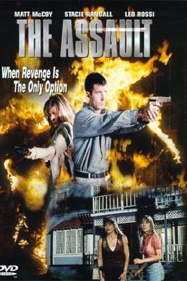 The Assault( 1996 )
