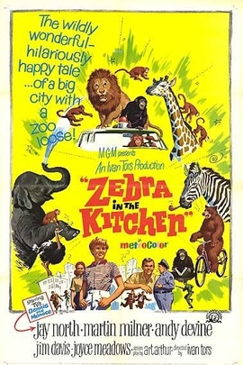 Zebra in the Kitchen( 1965 )