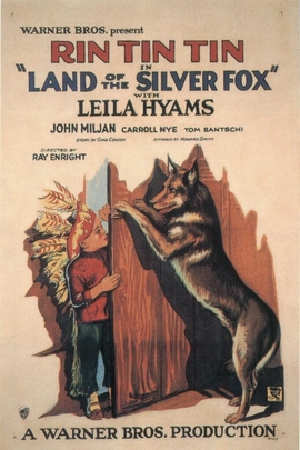 Land of the Silver Fox( 1928 )