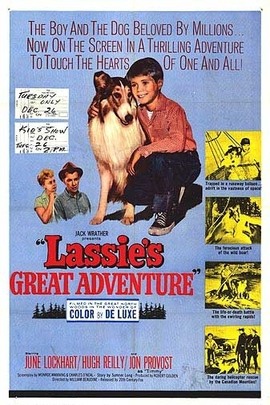 Lassie's Great Adventure( 1965 )