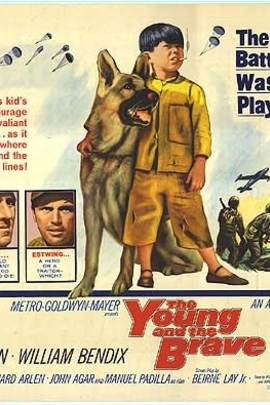 The Young and the Brave( 1963 )