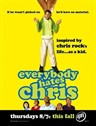人人都恨克里斯/Everybody Hates Chris