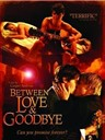 爱与分手间 Between Love & Goodbye(2008)