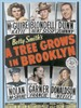 长春树/A Tree Grows in Brooklyn(1945)