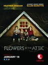 阁楼之花/Flowers in the Attic(2014)