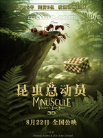 昆虫总动员/Minuscule: Valley of the Lost Ants(2013)