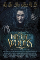 魔法黑森林/Into the Woods (2014)