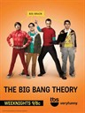 生活大爆炸/The Big Bang Theory