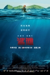 鲨滩/The Shallows(2016)