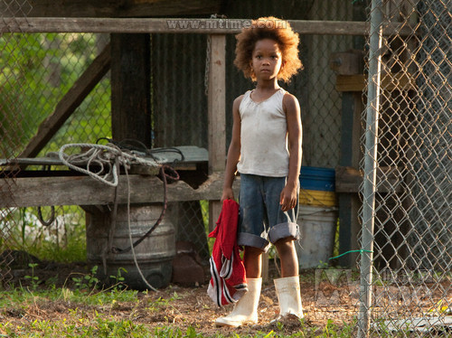 南方的野兽Beasts of the Southern Wild(2012)剧照 #09