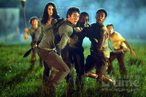 迷宫行者The Maze Runner(2014)剧照 #05